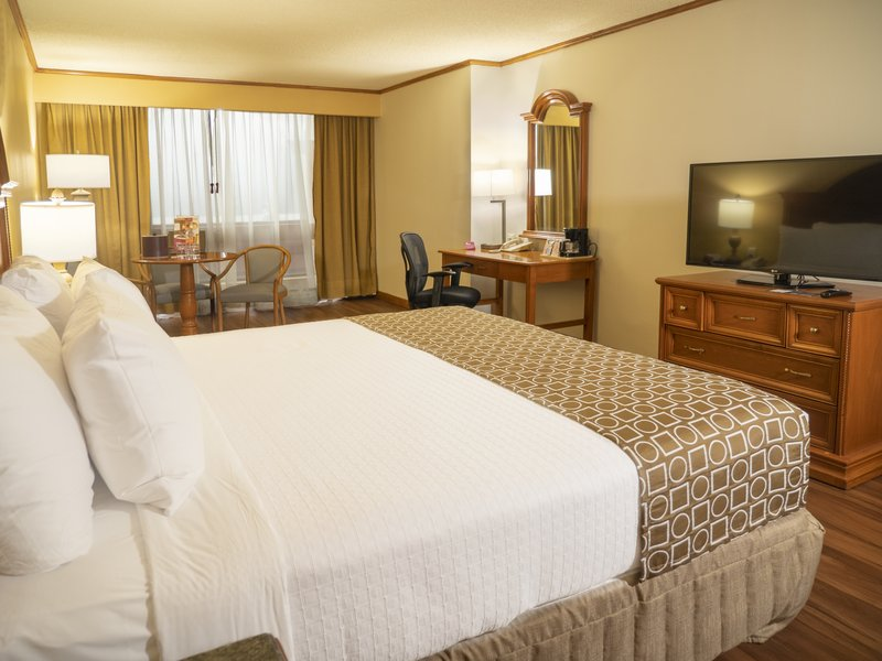Crowne Plaza Monterrey-Superior Room<br/>Image from Leonardo