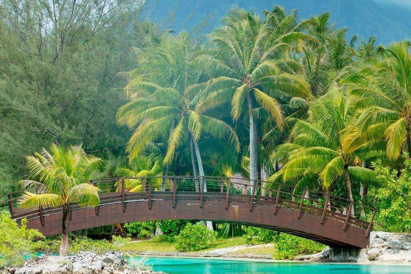 St Regis Resort Bora Bora - Private Lagoonarium <br/>Image from Leonardo