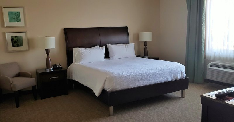 Hilton Garden Inn San Bernardino-Accessible King<br/>Image from Leonardo