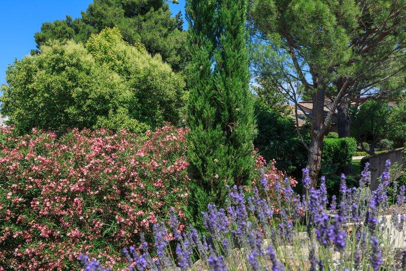 Auberge de Cassagne-garden<br/>Image from Leonardo