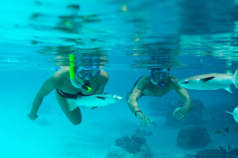 St Regis Resort Bora Bora - Lagoonarium <br/>Image from Leonardo