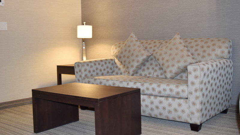 Holiday Inn Express Golden-Kicking Horse-Sleeper Sofa<br/>Image from Leonardo