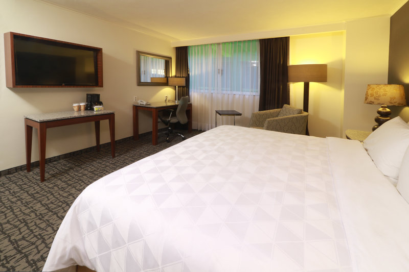 Holiday Inn Ciudad de Mexico-Trade Center-King Bed Guest Room<br/>Image from Leonardo