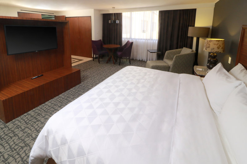 Holiday Inn Ciudad de Mexico-Trade Center-Jacuzzi Suite<br/>Image from Leonardo