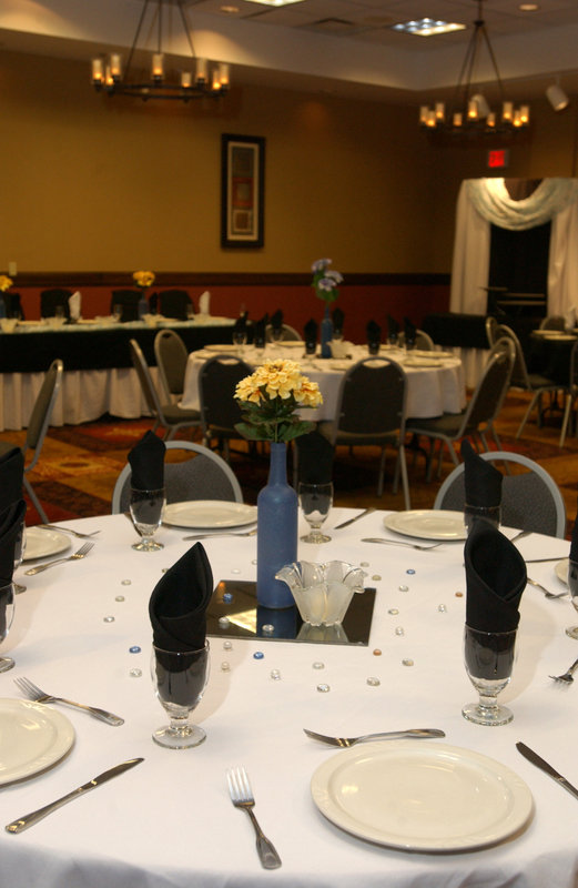Holiday Inn Hotel & Suites Owatonna-Custom details for your special event<br/>Image from Leonardo