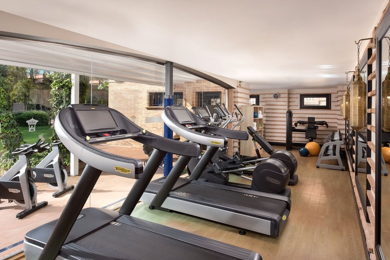 Hotel Alfonso XIII; a Luxury Collection Hotel Seville-Fitness Centre<br/>Image from Leonardo