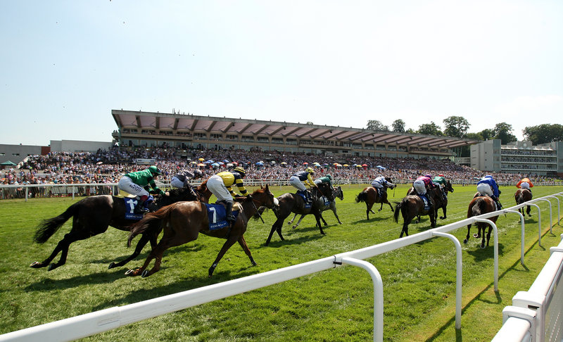 Holiday Inn London - Kingston South-Admire the Horse Racing<br/>Image from Leonardo