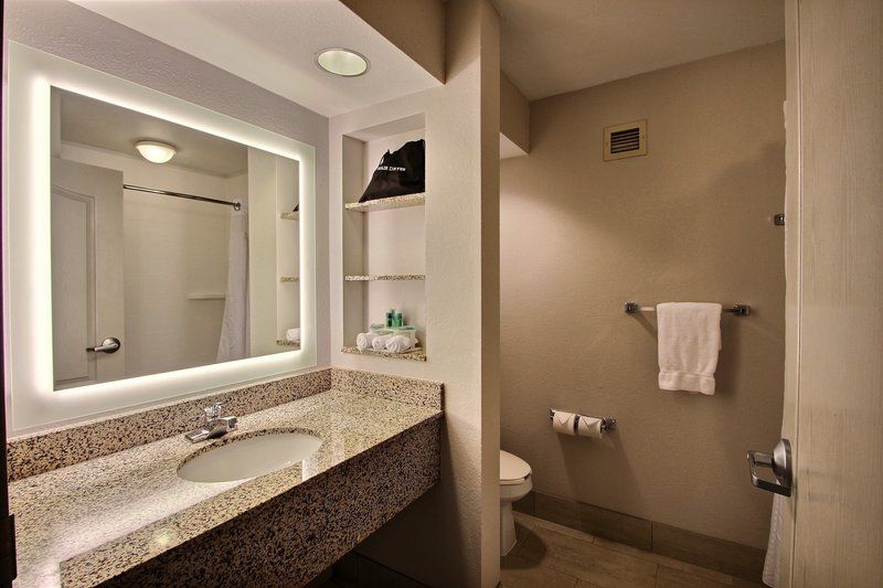Holiday Inn Express & Suites Milwaukee Airport-Guest Bathroom<br/>Image from Leonardo