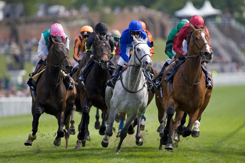 Holiday Inn Express Chester Racecourse-Enjoy a day at Chester Races<br/>Image from Leonardo