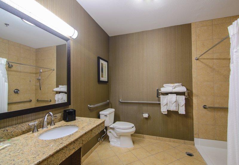 Holiday Inn Arlington NE-Rangers Ballpark-Accessible Roll-In Shower<br/>Image from Leonardo