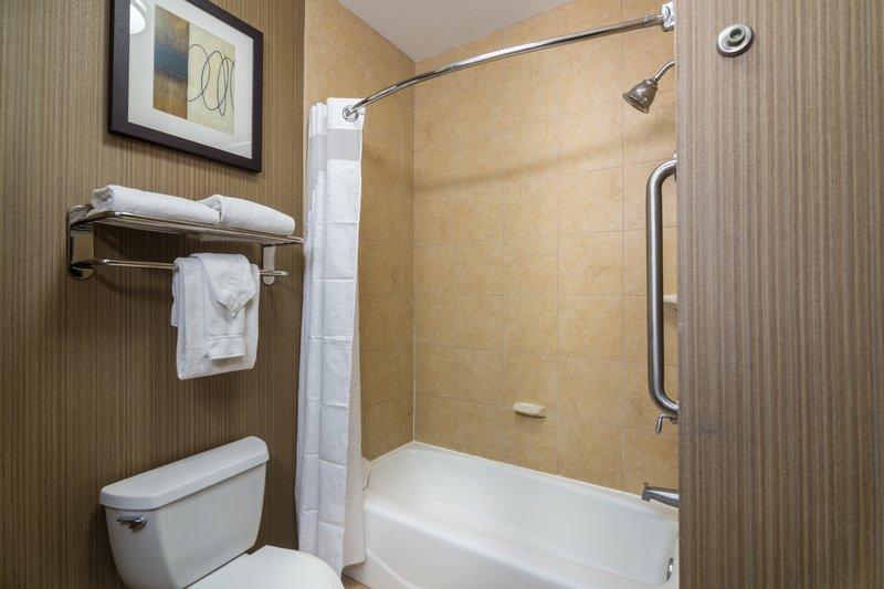 Holiday Inn Arlington NE-Rangers Ballpark-Accessible Tub<br/>Image from Leonardo