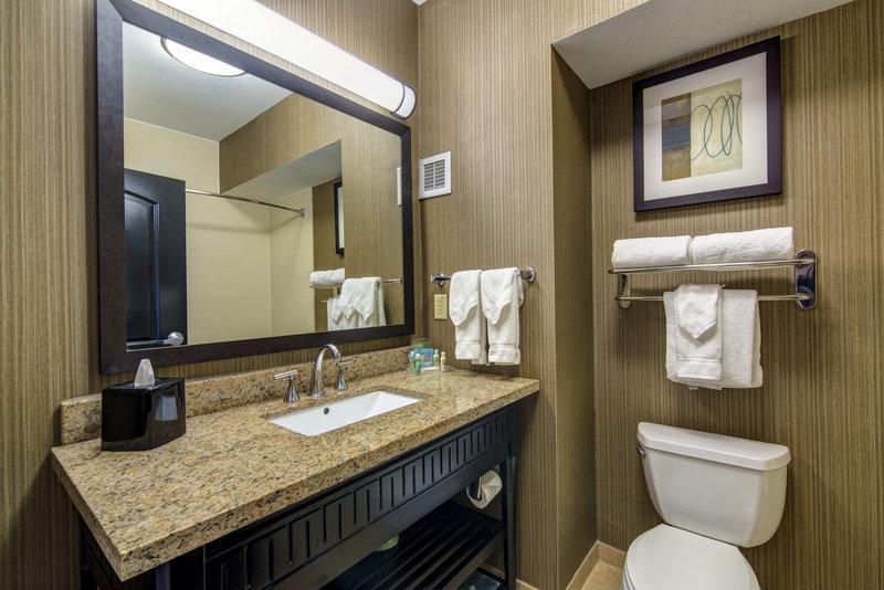 Holiday Inn Arlington NE-Rangers Ballpark-Standard Guest Bathroom<br/>Image from Leonardo