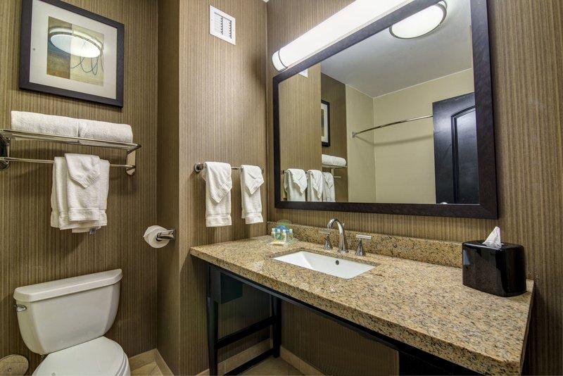 Holiday Inn Arlington NE-Rangers Ballpark-Feature Guest Bathroom<br/>Image from Leonardo