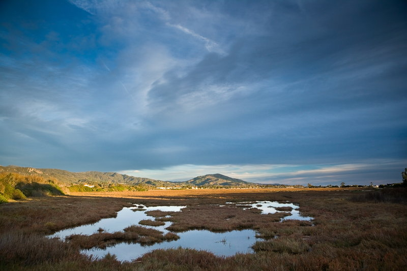 Holiday Inn Express & Suites Carpinteria-Self Guided Tours at Carpinteria Salt Marsh Refuge<br/>Image from Leonardo