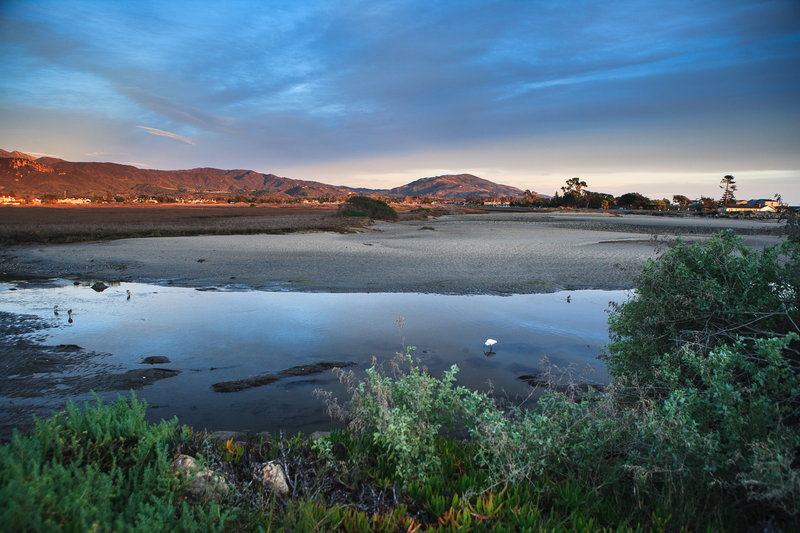 Holiday Inn Express & Suites Carpinteria-Carpinteria Beach Tidal Wetlands<br/>Image from Leonardo