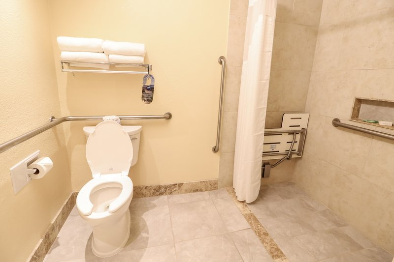 Holiday Inn Hotel & Suites Vero Beach-Oceanside-Wheelchair Accessible Roll in Shower<br/>Image from Leonardo