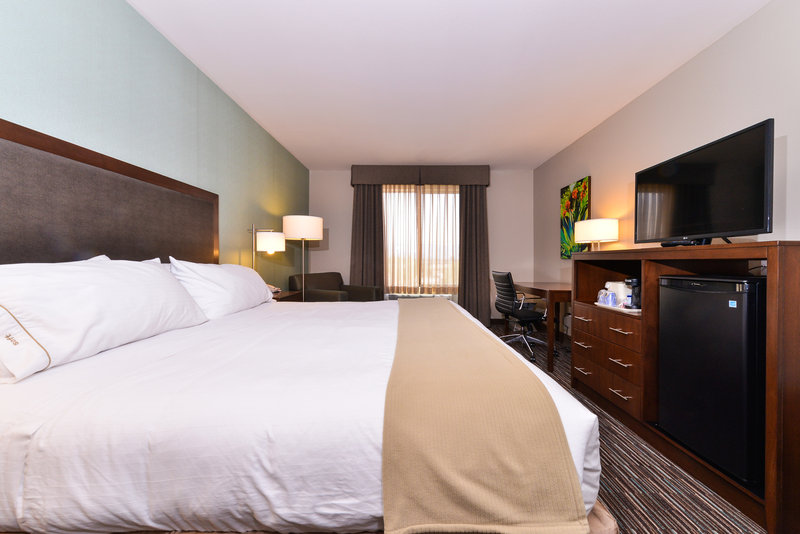 Holiday Inn Express & Suites Indio-Spacious King Room<br/>Image from Leonardo