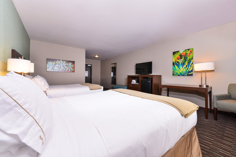 Holiday Inn Express & Suites Indio-Guest Room<br/>Image from Leonardo