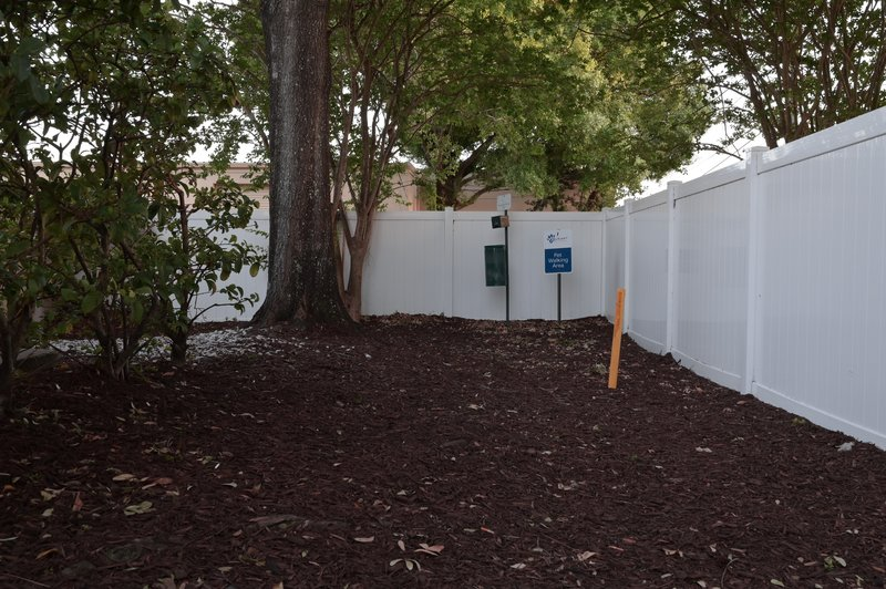 Candlewood Suites Clearwater-Pet walking area<br/>Image from Leonardo