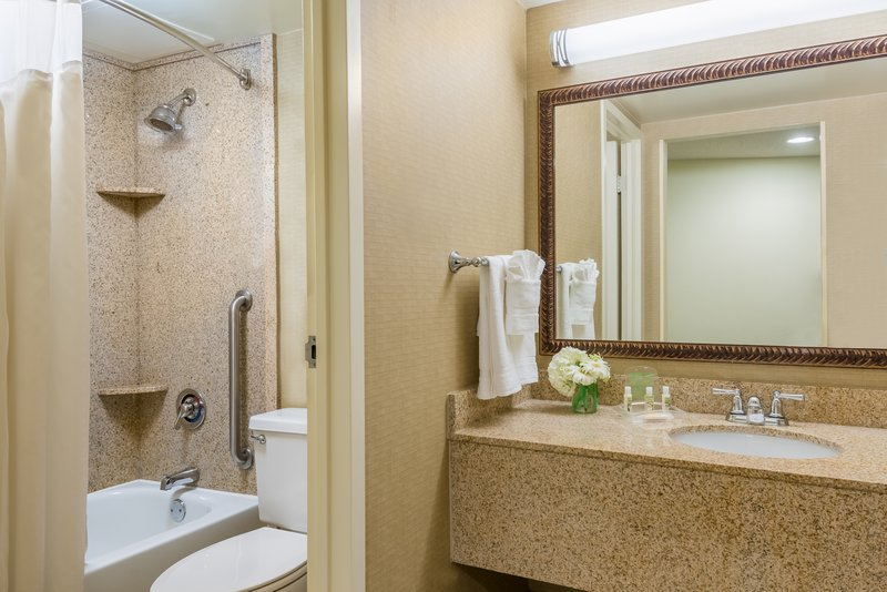 Holiday Inn Mobile - Downtown/Historic District-Standard Guest Bathroom<br/>Image from Leonardo