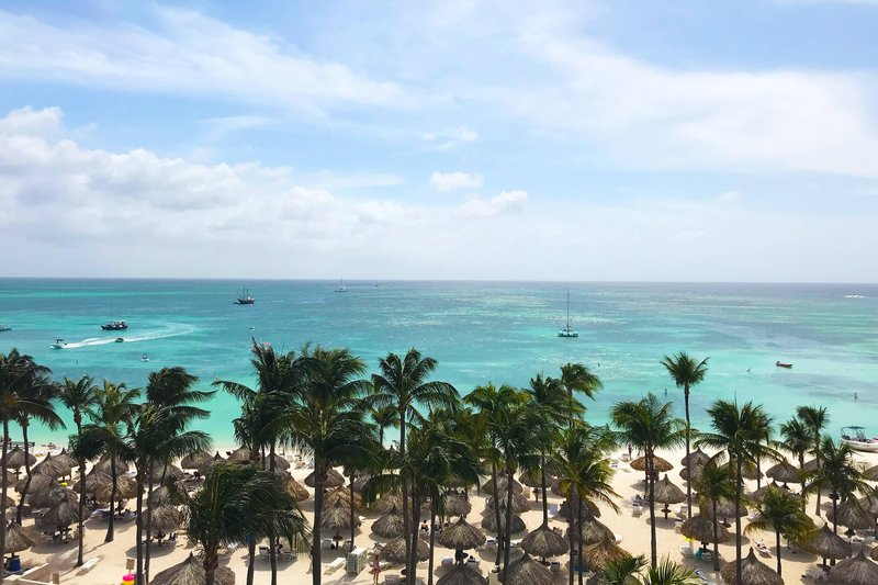 Aruba Marriott Resort - Tradewinds Junior Suite - Ocean View <br/>Image from Leonardo