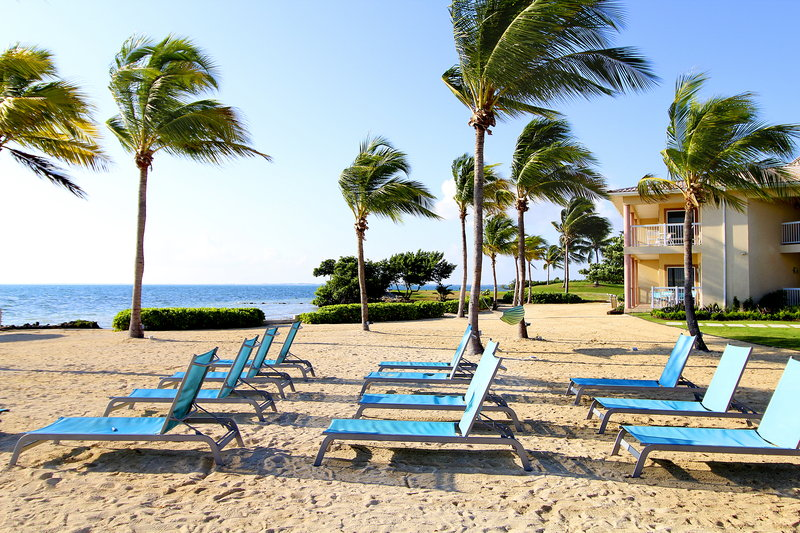 Holiday Inn Resort Grand Cayman-Beach, ocean side, water view, relax<br/>Image from Leonardo