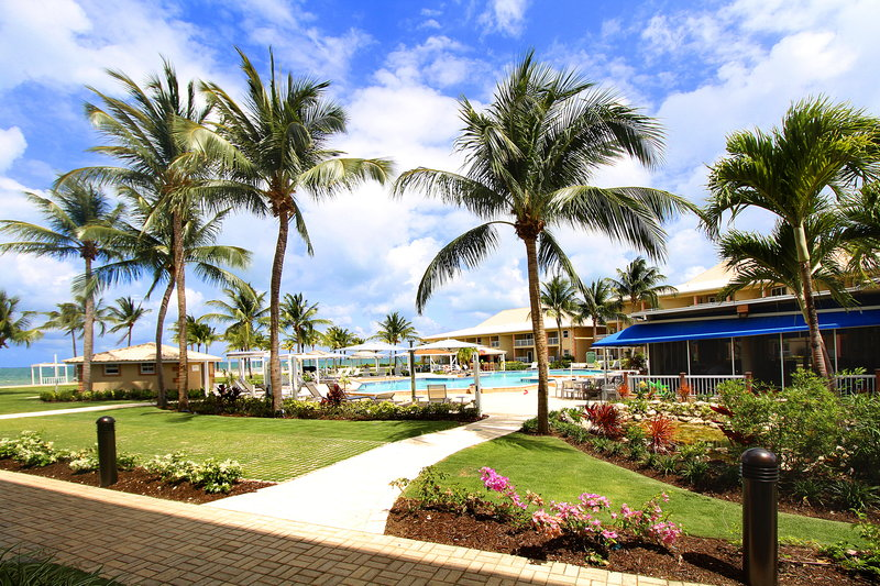 Holiday Inn Resort Grand Cayman-beach, ocean view, outdoor pool, paradise, flowers, landscaping<br/>Image from Leonardo