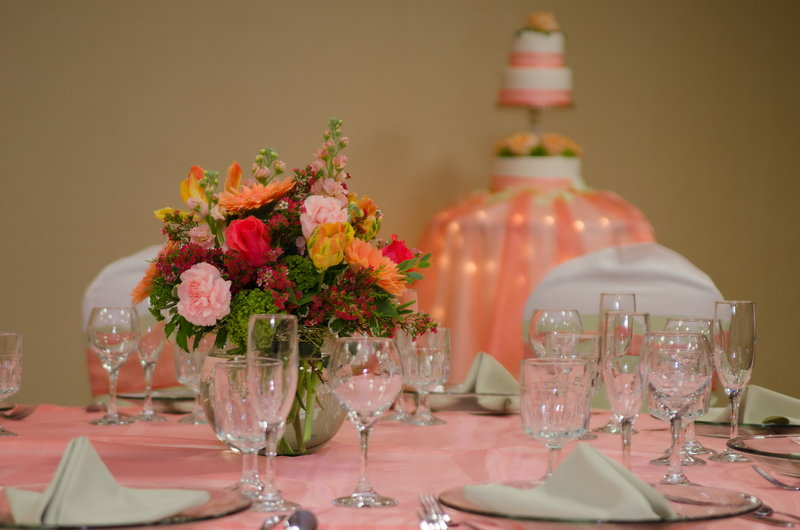 Holiday Inn Hotel & Suites Mansfield-Conference Ctr-Wedding Idea Peach and White<br/>Image from Leonardo