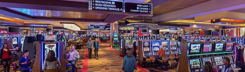 Crowne Plaza Chicago Ohare Hotel & Conference Center-Rivers Casino only minutes from the hotel<br/>Image from Leonardo
