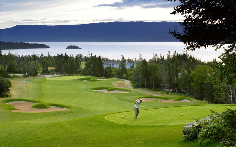 Holiday Inn Express Deer Lake-Area Attractions<br/>Image from Leonardo