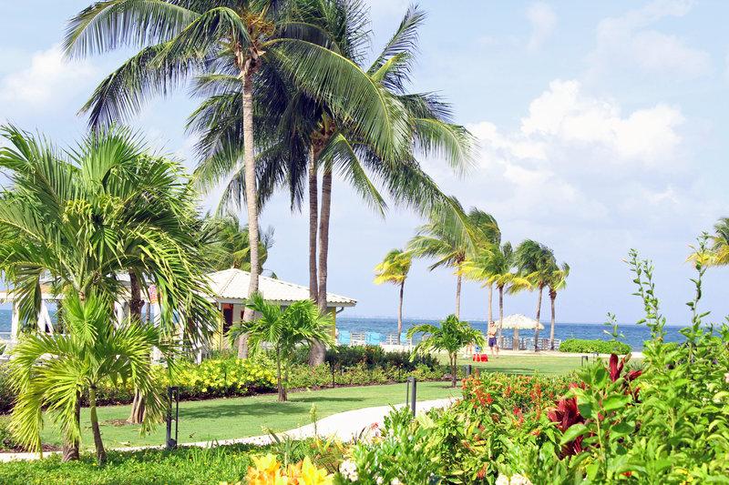 Holiday Inn Resort Grand Cayman-tropical gardens, ocean view, sea view, lush, escape<br/>Image from Leonardo