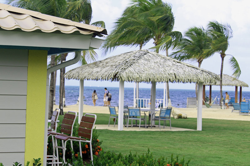 Holiday Inn Resort Grand Cayman-Pool bar, outdoor seating, family fun, beach games, ocean breeze<br/>Image from Leonardo