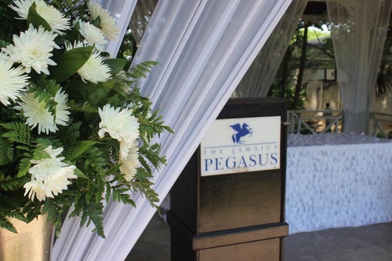 Jamaica Pegasus-Wedding<br/>Image from Leonardo
