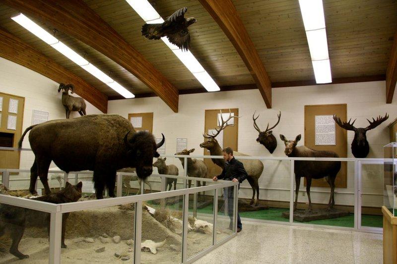 Holiday Inn Casper East - McMurry Park-Werner Wildlife Museum<br/>Image from Leonardo