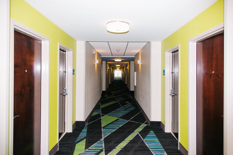Holiday Inn Express & Suites Tampa USF Busch Gardens-Safe Clean Hallways<br/>Image from Leonardo