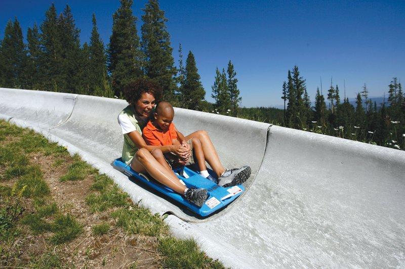 Holiday Inn Express Fraser - Winter Park Area-Winter Park Resort's Alpine Slide is fun for everyone<br/>Image from Leonardo