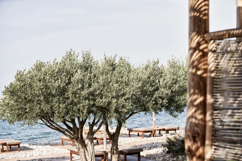 Blue Palace; a Luxury Collection Hotel-The Beach Haven At Blue Palace<br/>Image from Leonardo