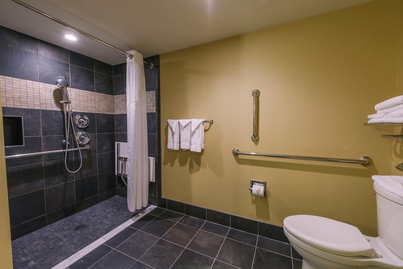 Holiday Inn Mt. Kisco-ADA Roll-in Shower Bathrooms Avalable<br/>Image from Leonardo