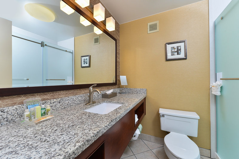 Holiday Inn Cody-At Buffalo Bill Village-standard bathroom<br/>Image from Leonardo