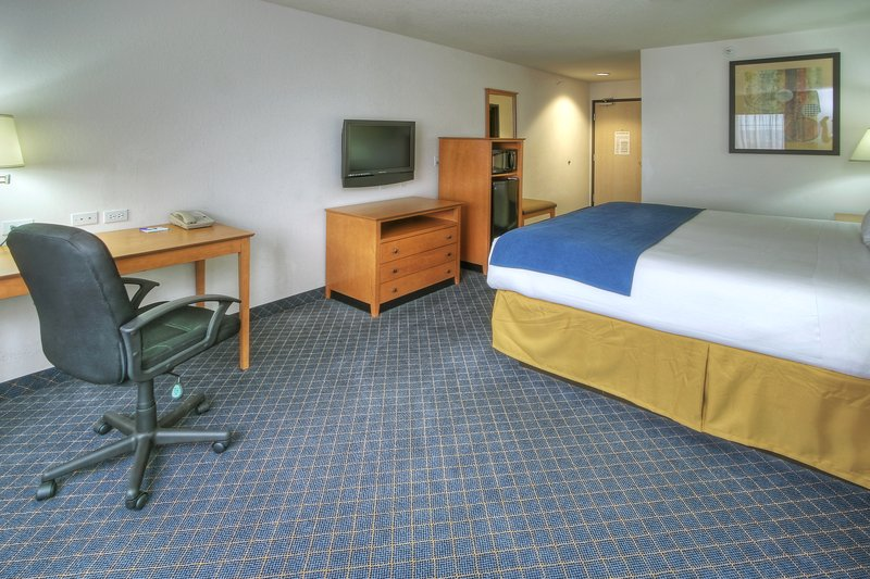 Holiday Inn Express & Suites Carlsbad-ONE KING STANDARD ROOM<br/>Image from Leonardo