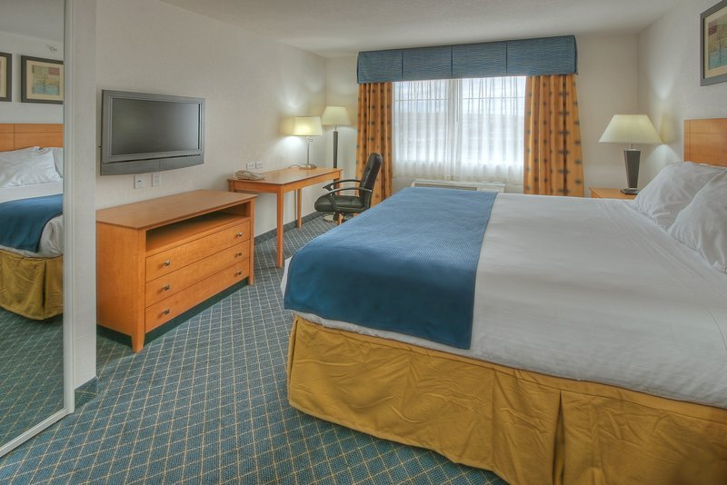Holiday Inn Express & Suites Carlsbad-ONE KING BED STANDARD<br/>Image from Leonardo