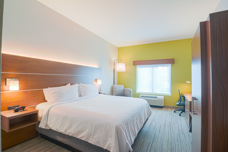Holiday Inn Express & Suites Tampa USF Busch Gardens-King Sized Bed Room<br/>Image from Leonardo