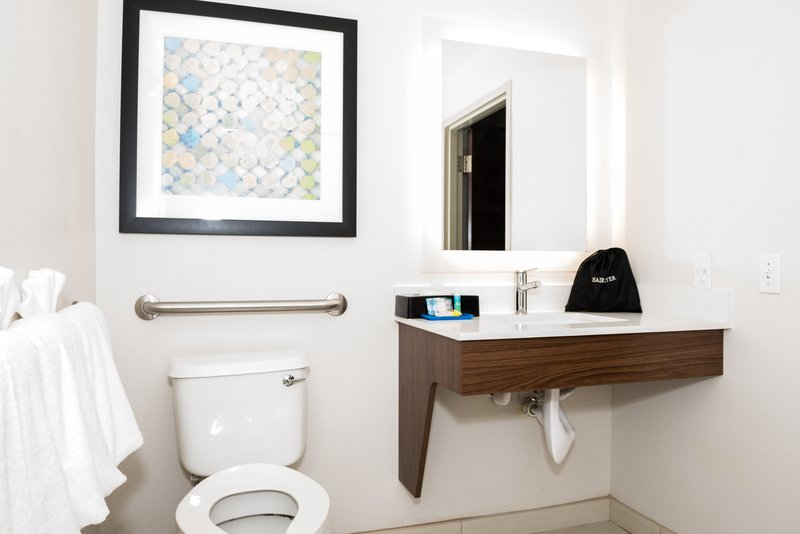 Holiday Inn Express & Suites Tampa USF Busch Gardens-ADA Guest Bathroom<br/>Image from Leonardo