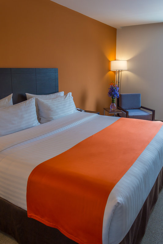 Holiday Inn Express Tegucigalpa-Guest Room<br/>Image from Leonardo