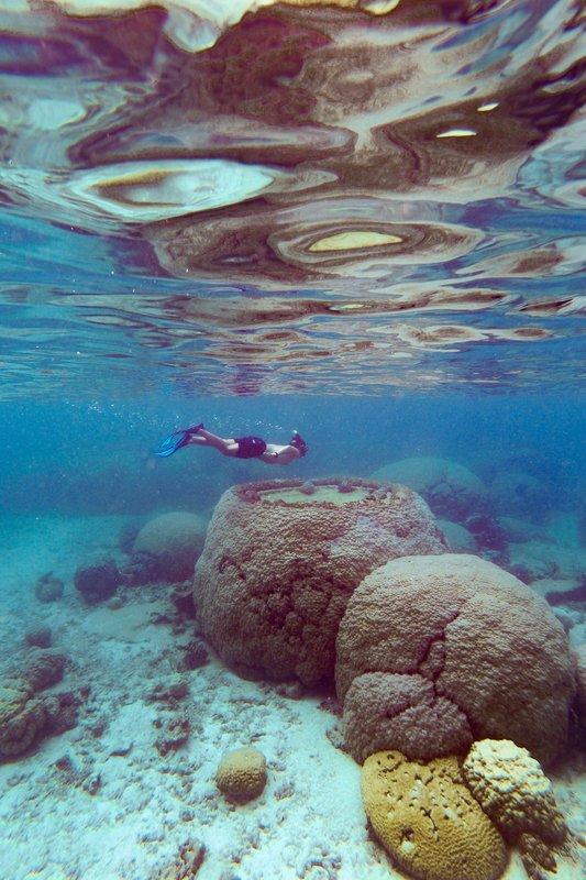 Sheraton New Caledonia Deva Spa And Golf Resort-Snorkeling And Scuba Diving<br/>Image from Leonardo