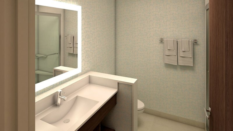 Holiday Inn Express And Suites West Omaha - Elkhorn-Guest Bathroom<br/>Image from Leonardo