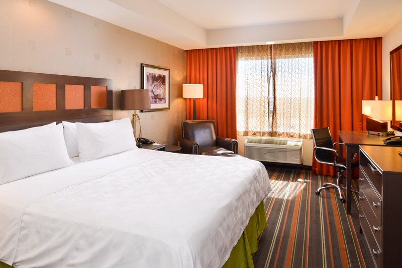 Holiday Inn Amarillo West Medical Center-King Bed Guest Room<br/>Image from Leonardo
