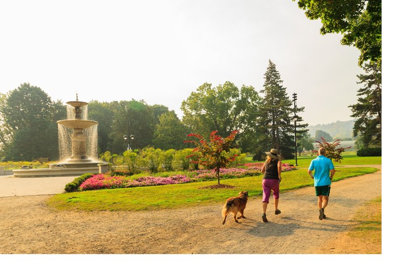 Staybridge Suites Hamilton - Downtown-Gage Park, full of amazing trails and gardens<br/>Image from Leonardo