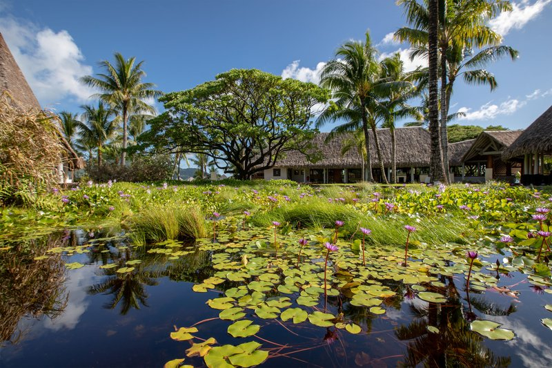 Le Meridien Bora Bora - Garden Reception <br/>Image from Leonardo