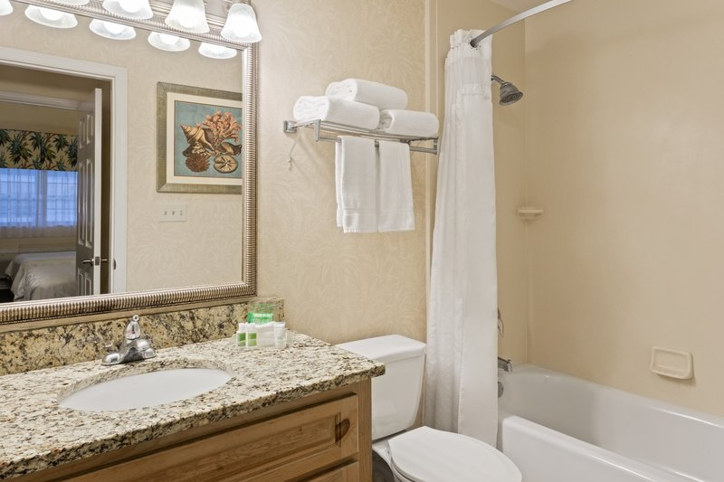 Holiday Inn & Suites Clearwater Beach S Harbour-Islander bathroom includes all the basic bathroom amenities.<br/>Image from Leonardo